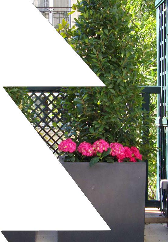 sapin vert paysagiste en seine et marne et val de marne. Black Bedroom Furniture Sets. Home Design Ideas
